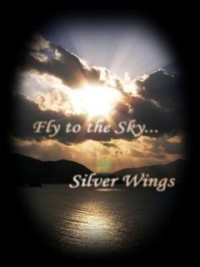 Fly to the Sky...