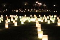 燈花会2010-2